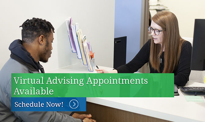 Virtual Advising Appointments Available
